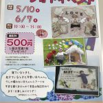 【長野本店】ベビーアートフォトイベント開催します